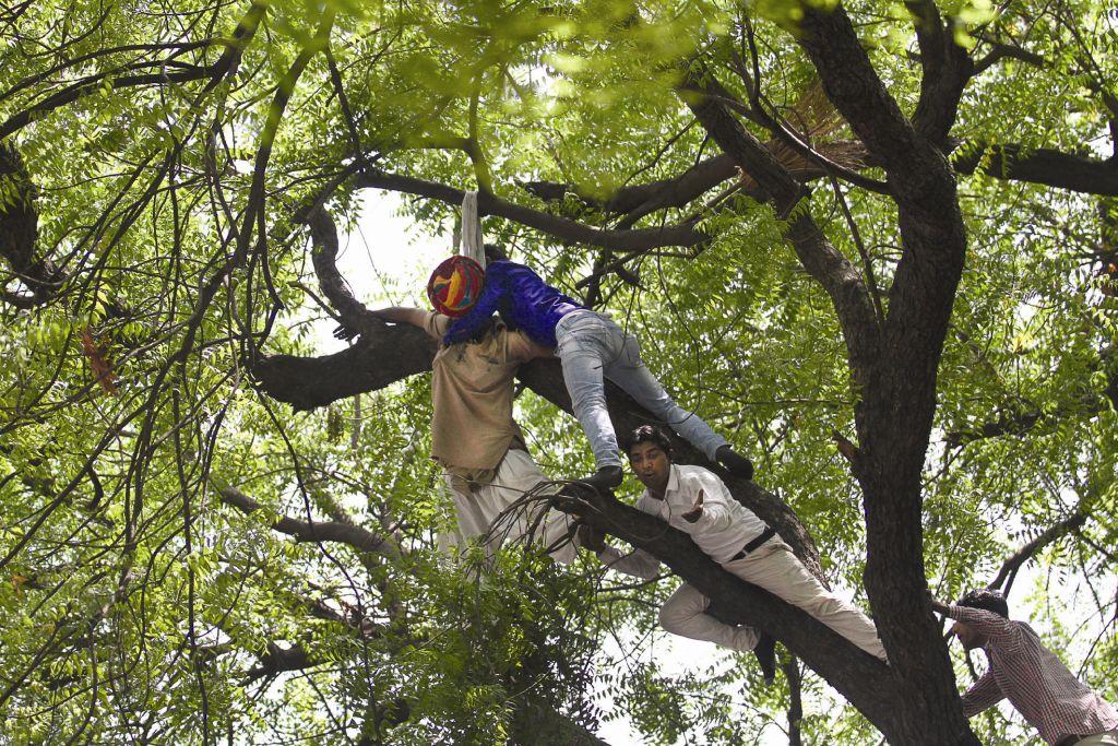 नकली पेड़, असली मौत