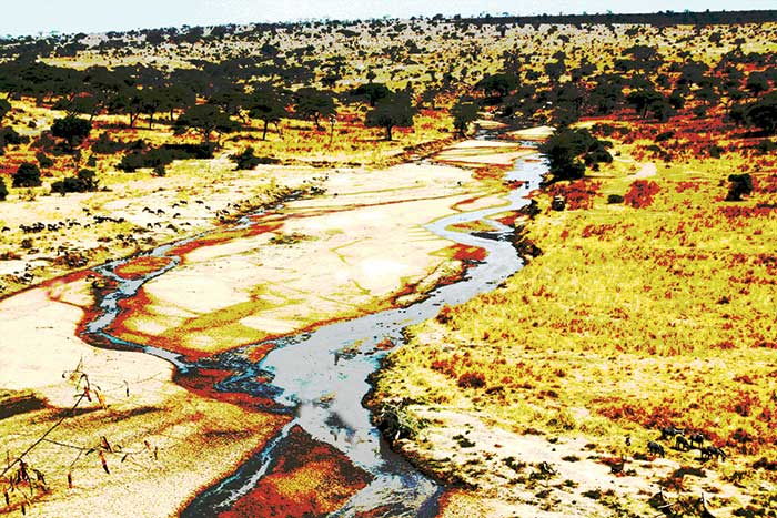 Tarangire_River_Tanzania_in_July_(Dry_season)
