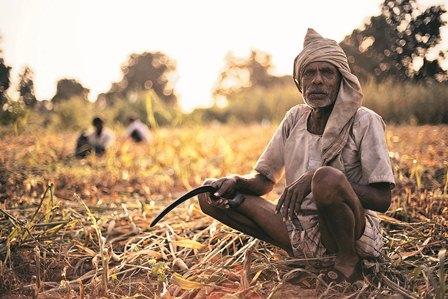 बुन्देलखण्ड में सूखे की मार, किसान बेहाल