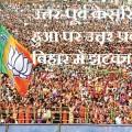 BJP victory1